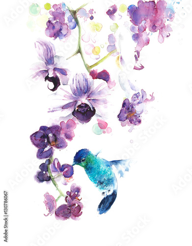 Orchids the tropical flowers watercolor painting illustration handmade isolated on white background greeting card - 130786067
