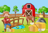 Farmer and animals in the farm field