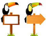 colorful toucan birds sitting on a blank wooden sign  - 130881618