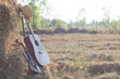 guitar and violin resting on straw Division in the fields, the w