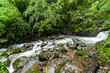 Постер, плакат: Chorro Las Mosas waterfalls along the Rio Anton in El Valle de Anton Panama