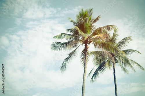 Copy space of tropical palm tree with sun light on sky background. - 130960017