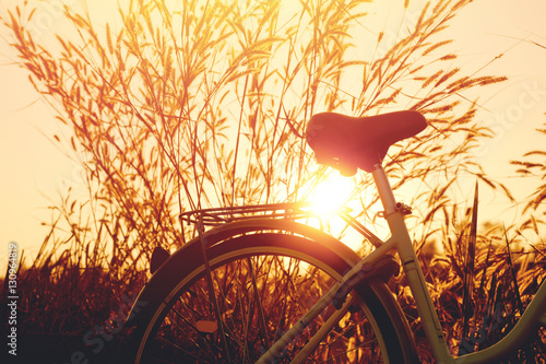 Foto op Plexiglas Fiets vintage bike with beautiful landscape image on sunset.