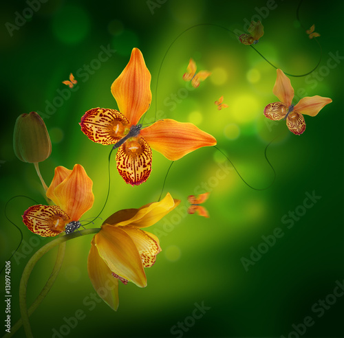 Amazing butterflies from the petals of orchids, floral background. Flowers and insects.