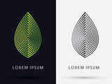 Luxury Leaf graphic vector