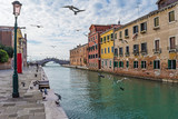 Venice (Italy) - The city on the sea. Here the canal to Arsenale fortress, with seagulls