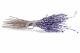 Bundle of lavander on white background isolate