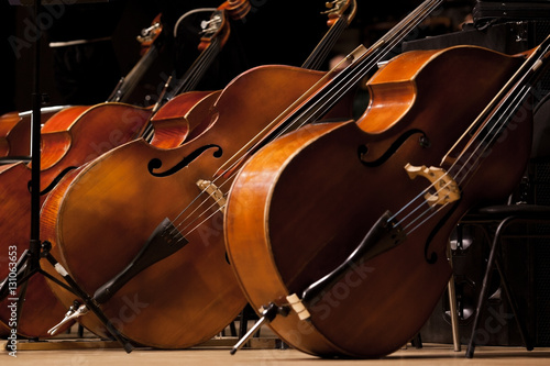 Basses standing on the stage in a symphony orchestra - 131063653