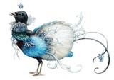 Blue paradise bird - 131076402