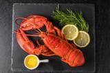 Fototapety 高級ロブスター  High-quality lobster