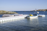 Plastic pontoon with two covered boats and fishing boat