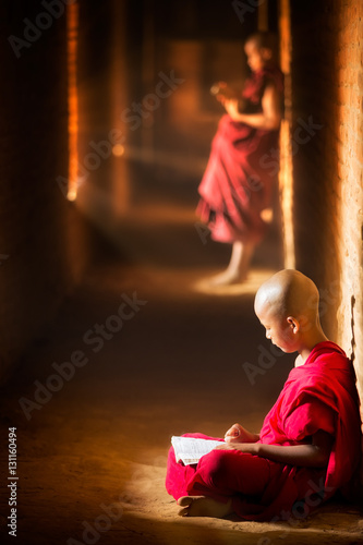 Novice monk reading book Poster