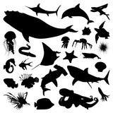 Whale Shark Jellyfish Fish Ocean Underwater Fauna Silhouette