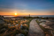 Path along Cadillac Mountain during a sunrise