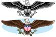 American bald eagle patriotic symbol