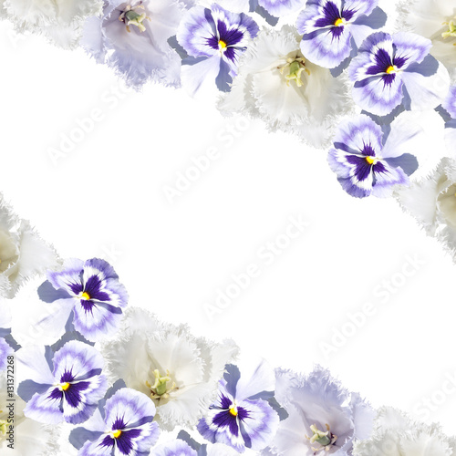 Beautiful floral background of pansies and tulips