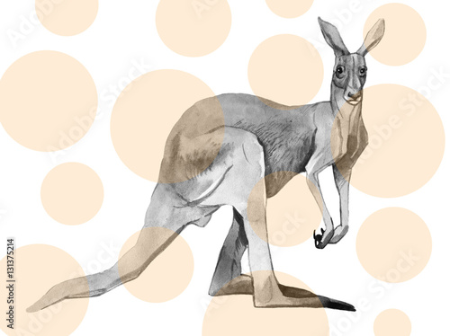 Watercolor kangaroo isolated on white background - 131375214