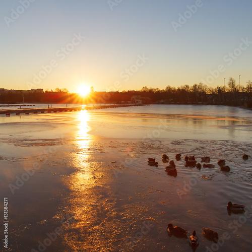 Poster Восход солнца на озере в Хельсинки, Финляндия