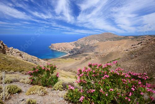 In de dag Zalm Mediterranean landscape