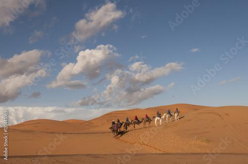 Poster Caravana berebere en el desierto de Merzouga, Marruecos