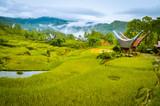 Morning fog in Toraja