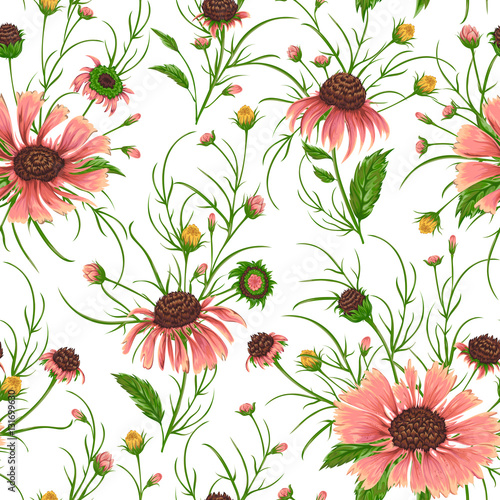 Fototapeta Seamless pattern with chamomile flowers. Rustic floral background. Vintage vector botanical illustration in watercolor style.