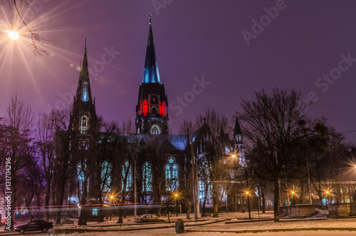 Foto op Canvas Violet Neo Gothic style cathedral