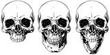 White graphic human skull with black eyes set - 131712256