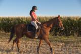 Joven mujer montando a caballo - 131747462