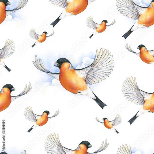Watercolor bullfinch. bird in flight handwork drawing. Christmas symbol. Beautiful winter bird with grey and pinkish plumage soaring in clouds. Handwork. Seamless pattern - 131808030