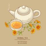 calendula tea  vector illustration