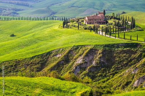 Foto op Canvas Pistache Tuscany, Crete Senesi landscape. Asciano