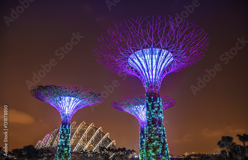 Poster Gardens by the Bay Singapur