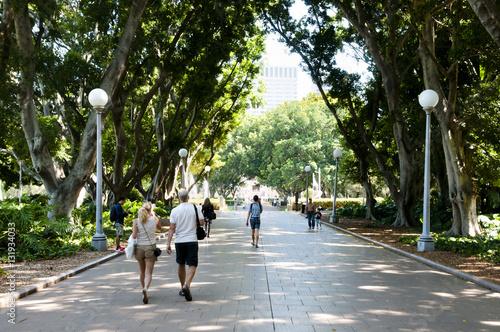 Fotobehang Sydney Hyde Park - Sydney - Australia