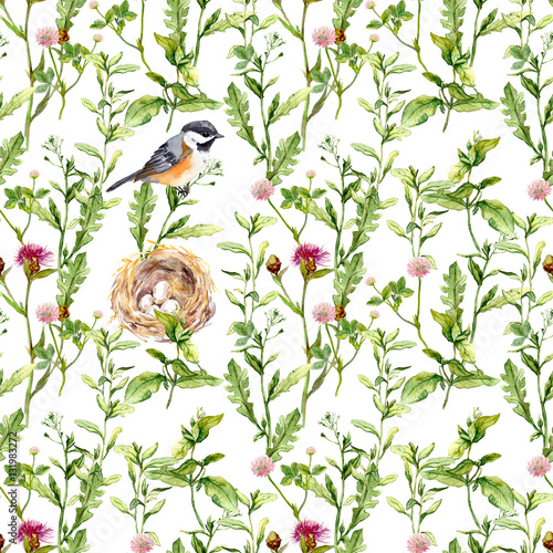 Materiał do szycia Pattern with herbs, bird and nest. Seamless watercolor