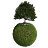 Palla erbosa con albero su sfondo bianco
