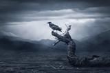 Crow sitting on a br...