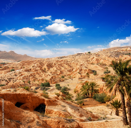 Poster Oasis in sand and stone desert landscape :)