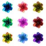Sampler of colorful floral patterns