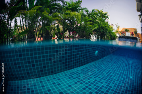 Underwater shot of tiled swimming pool bottom and green plant above water surface