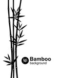 Bamboo background. Vector  - 132047459