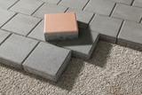 pedestrian path with paver bricks. Sidewalk pavement - 132052014