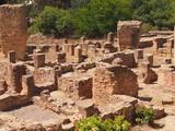 Руины древнего Карфагена