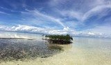 Beautiful View from Virgin Island in Panglao - 132073057