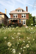 Abandoned houses in Detroit, Michigan, focus on the weeds