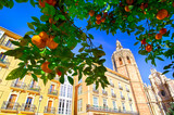 Valencia Hiszpania Architektura i Orange Tree