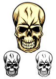 skull color dwa
