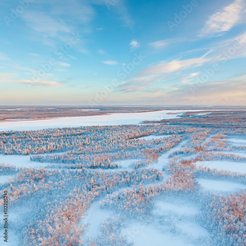 Short winter day of frozen tundra, top view Poster