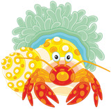 Diogenes-crab with an actinia