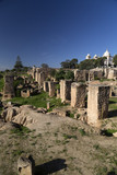 Ancient ruins in district of Punic Byrsa in Carthage ancient site of Tunis, Tunisia.